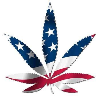 Medical marijuana USA