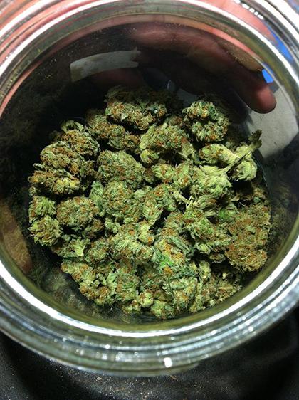 Medicinal cannabis in Canada