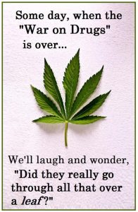 Cannabis war on drugs leaf