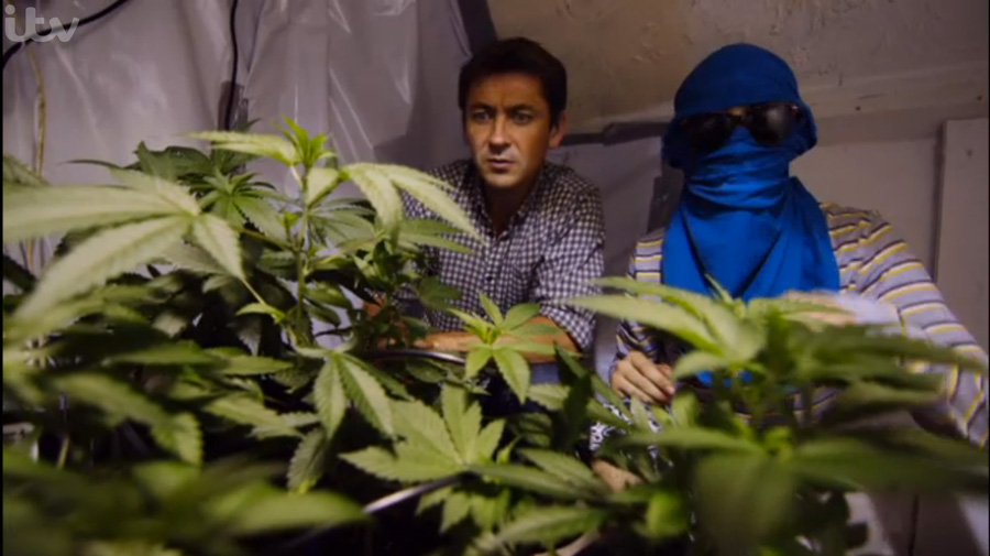 Screenshot from ITV documentary Exposure: Britain's Booming Cannabis Business presented by Conor Woodman.