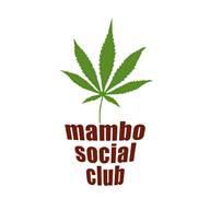 Mambo Cannabis Social Club, the second cannabis social club in Belgium.