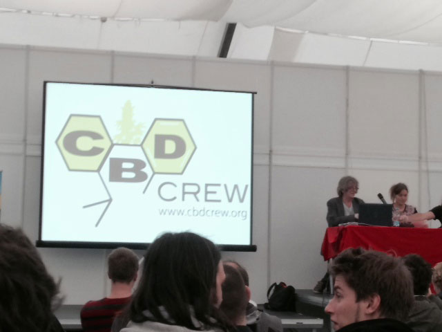 Dutch Passion CBD Crew Seeds, Cannafest 2013, Prague, with Howard Marks aka Mr Nice.