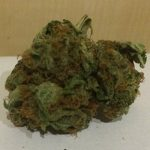 blueberry_herbal_cannabis